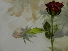 29, Detail