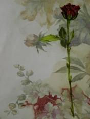 30, Detail